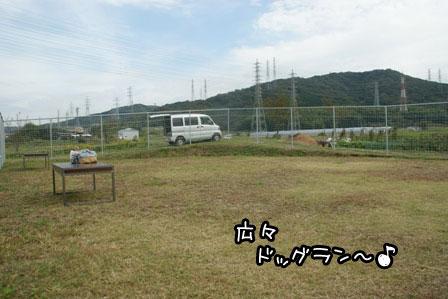 2_20121027203955.jpg