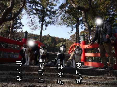 30_20130124192049.jpg