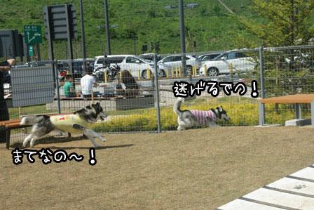 34_20120430171033.jpg