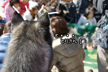 35_20121122215936.jpg