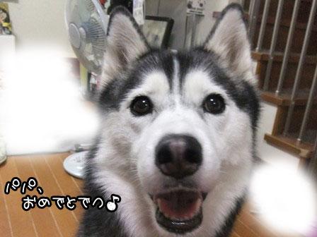 3_20120617122336.jpg