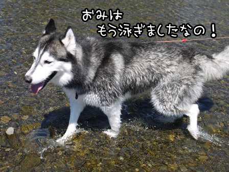 3_20120909162726.jpg