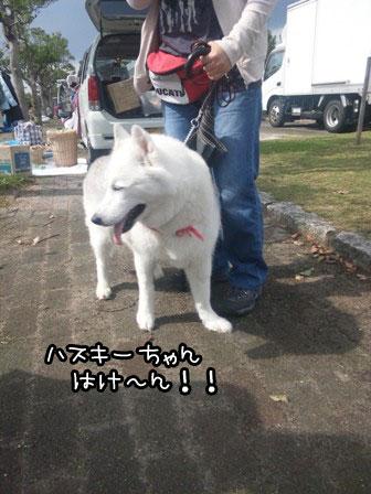 3_20121002211321.jpg