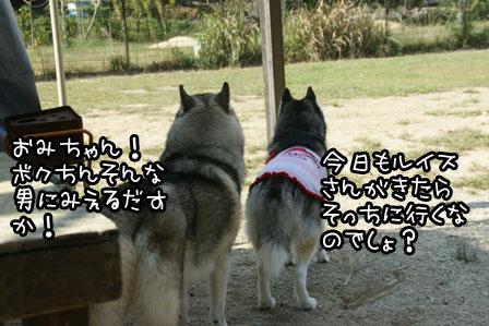 3_20121008224030.jpg
