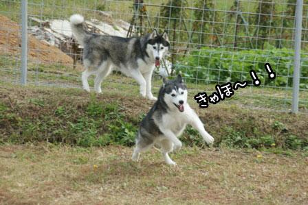 3_20121027204022.jpg
