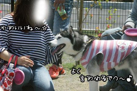 58_20120504220941.jpg