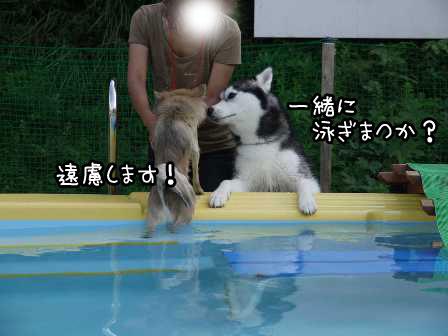 5_20120924211002.jpg