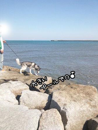5_20121024203330.jpg