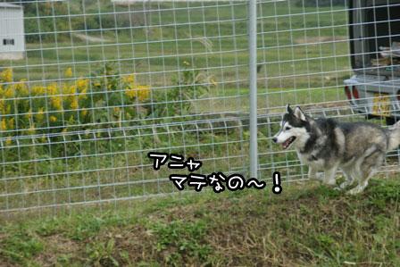 5_20121027204036.jpg