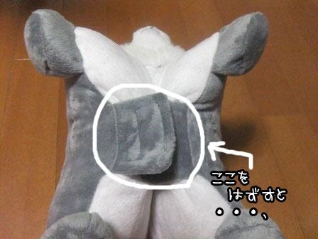 5_20121102192818.jpg