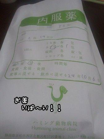 6_20121006195945.jpg