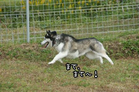 6_20121027204044.jpg
