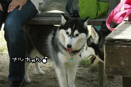 7_20120819200150.jpg