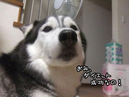 7_20121006195949.jpg