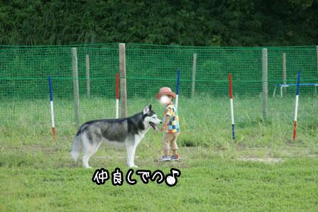 8_20120926203749.jpg
