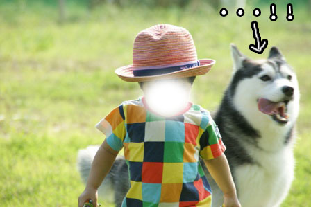 9_20120926203753.jpg