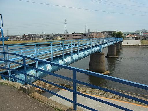 2012_5_26鶴見川 (2)