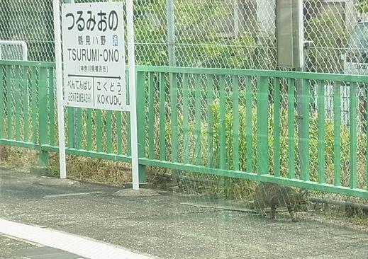 2012_5_26鶴見線 (11)