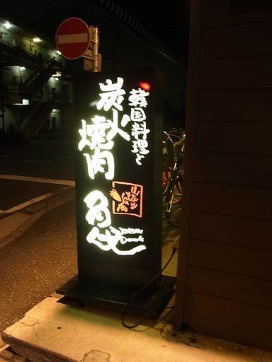 2012_08_05亀 (11)