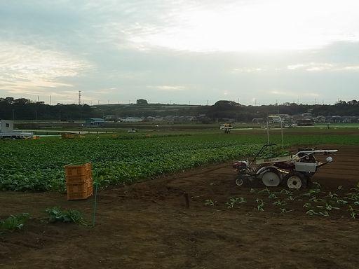 2012_10_13横須賀・三崎 (27)