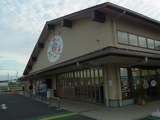 2012_10_13横須賀・三崎 (28)