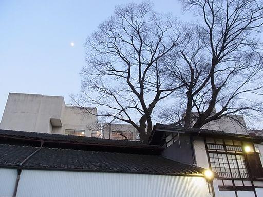 2012_12_23秩父 (33)