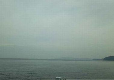 DVC海00451