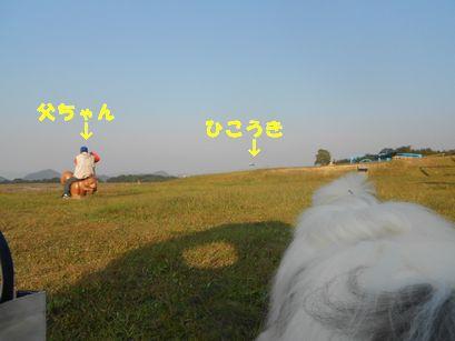 DSCN2713.jpg