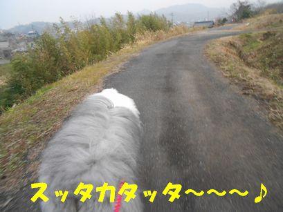 DSCN3899.jpg