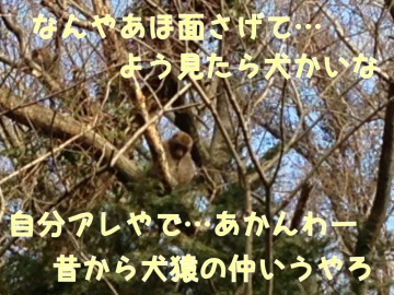 image042.jpeg
