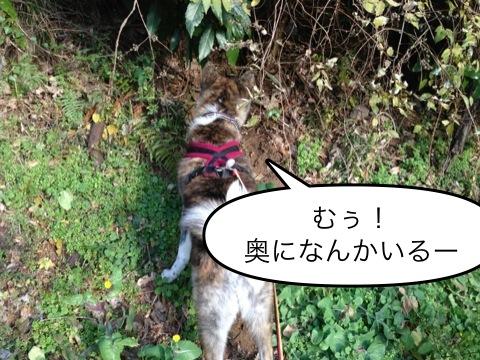 image06.jpeg