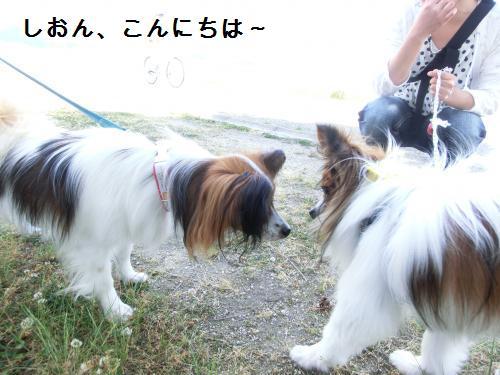 大津オフ206069