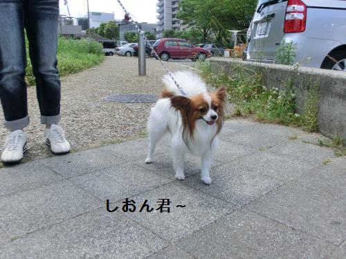 大津オフ206067