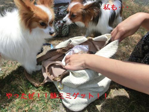 大津オフ2060129