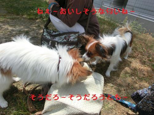 大津オフ2060128