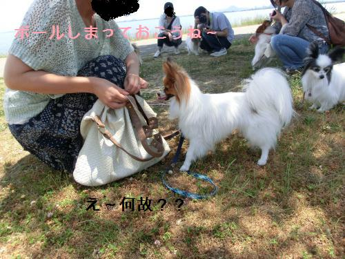 大津オフ2060123