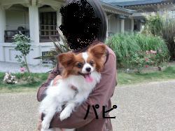 琵琶湖206064
