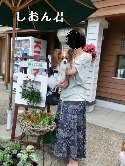 琵琶湖206062