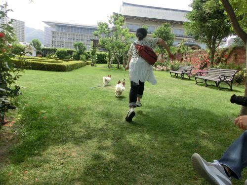 琵琶湖2060179