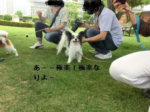 琵琶湖2060174