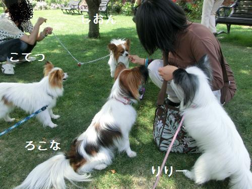 琵琶湖2060171