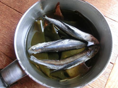 押し寿司3