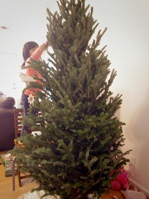 クリスマス準備2014 4