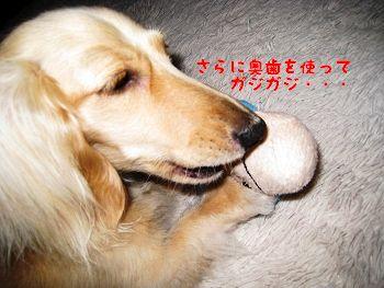 resize3949_20120629114010.jpg