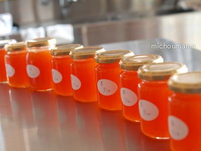 abricot4.jpg