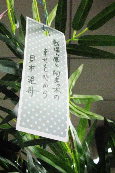 40_15.jpg