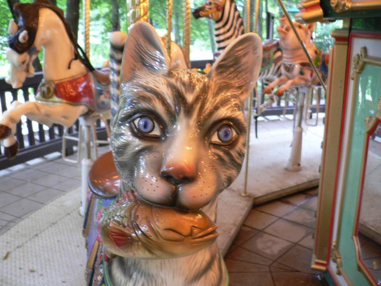 猫のメリーゴランド