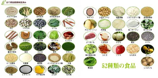 52種類の食品