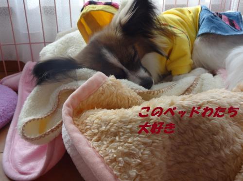 繝吶ャ繝雲convert_20130217191333