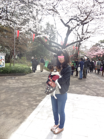 縺輔¥繧峨→_convert_20130320181608